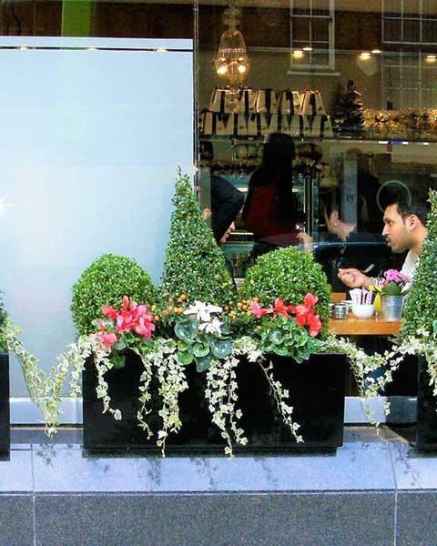 window display florist
